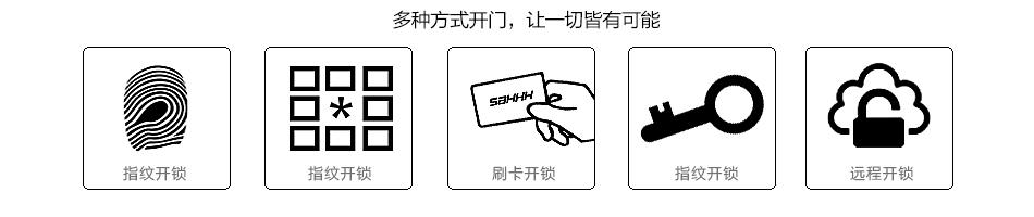 高档爱博体育赞助巴塞门锁(H2)